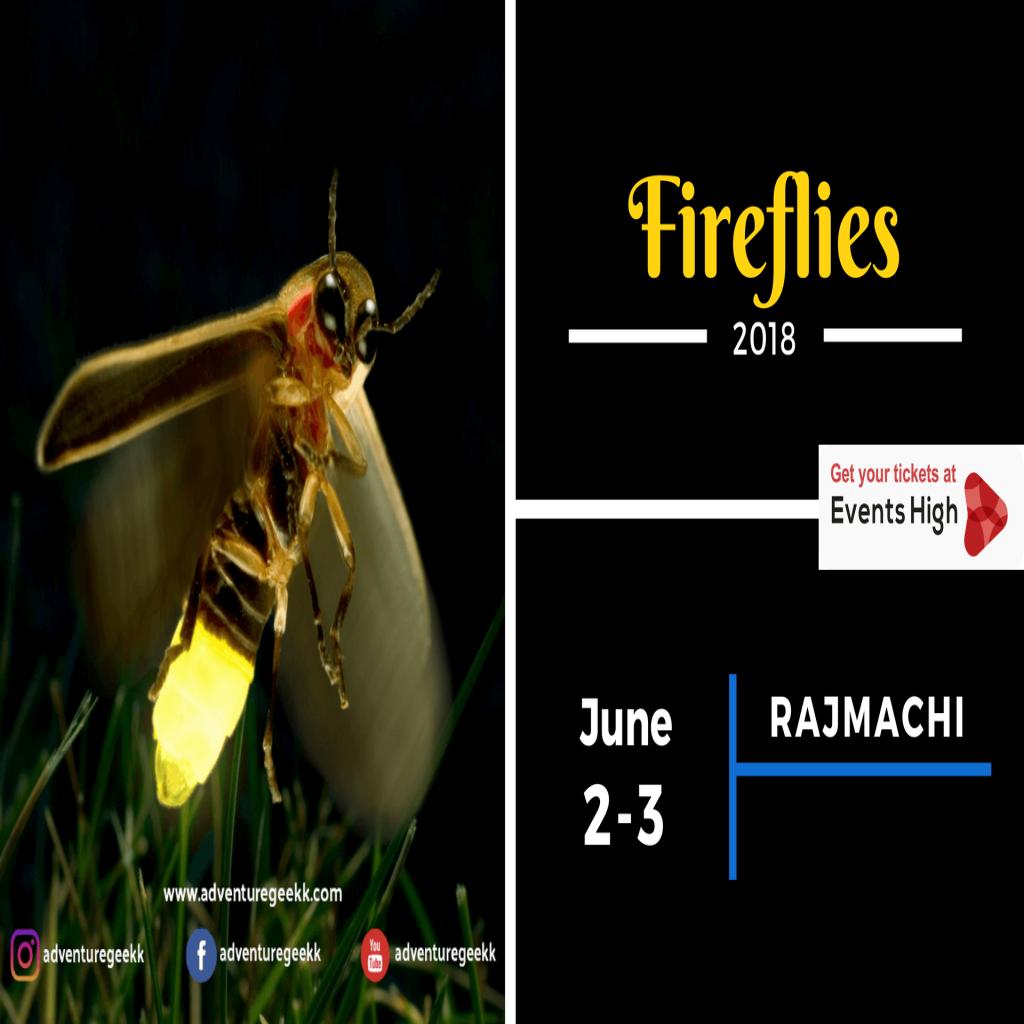 Fireflies Special Trek - Rajmachi pimple saudagar
