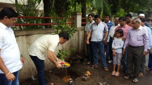 IMG-20160709-WA009 Tree Plantation In Pimple Saudagar | Tree Plantation In Pimple Saudagar
