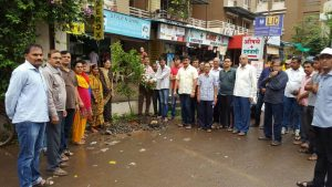 IMG-20160709-WA011 Tree Plantation In Pimple Saudagar | Tree Plantation In Pimple Saudagar