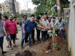 IMG-20160730-WA002 100 Banyan Trees Planted From Kokane Chowk to Swaraj Garden in Pimple Saudagar | 100 banyan trees planted from kokane chowk to swaraj garden in pimple saudagar