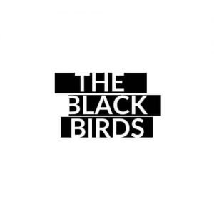 free logo design work Free Logo design work The Black Birds Logo 300x300 free logo design work Free Logo design work The Black Birds Logo 300x300