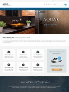 aqua-alternative-1364112761 for plumbers Website Development | website development